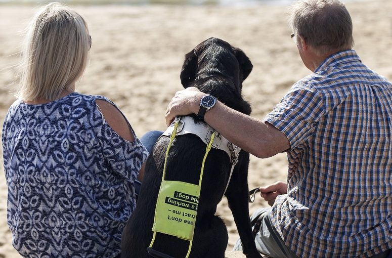 guide dogs for the blind case study image